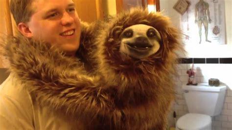 pet sloth www pixshark com images galleries with a bite