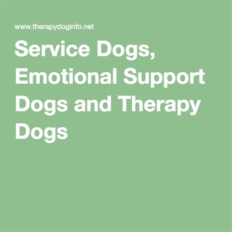 emotional therapy service dogs emotional support dogs and therapy dogs service animals therapy dogs
