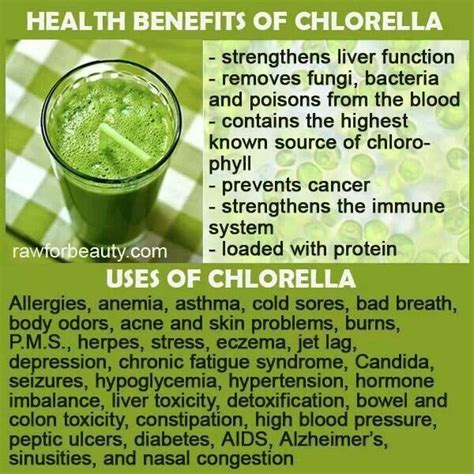 How To Detox With Chlorella by 1000 Images About Health Tips On Spirulina
