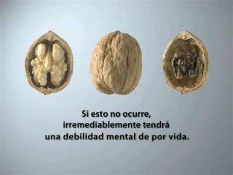 el cerebro del nio el primer a 241 o de vida marca el futuro del ni 241 o nuez 2008 www consejopublicitario org youtube