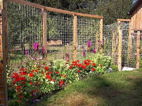 trellis for fencing tina s terrific trellis fence flea market gardening