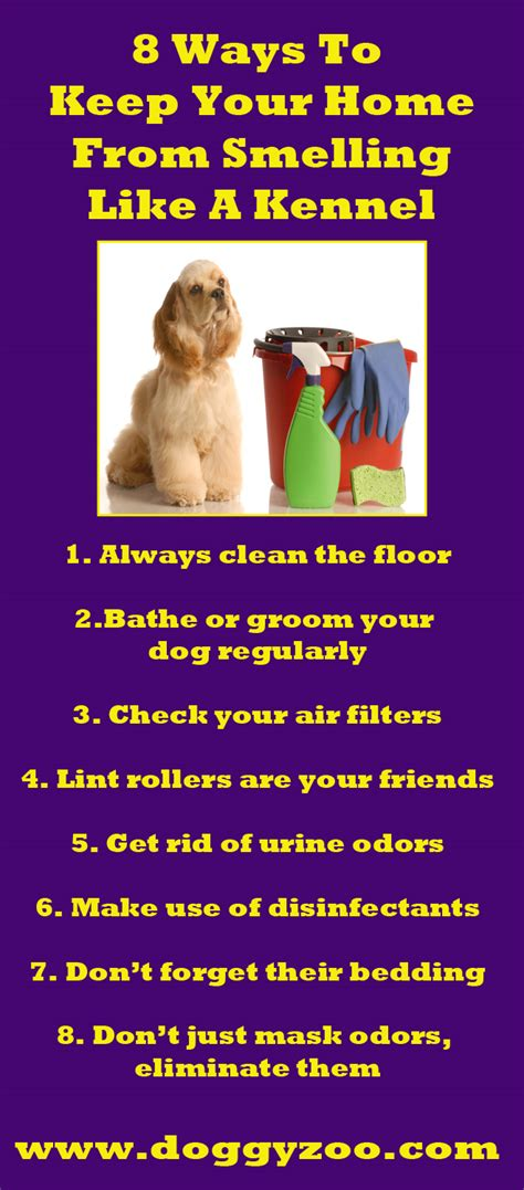 How To Keep Your House From Smelling Like 28 Images 5 Ways To Keep Your House From