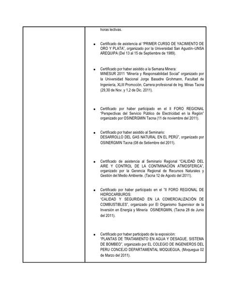 Modelo Curriculum Rosario Formato Curriculum