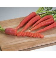 b f vegetables winslow maine gardens johnny seed and carrot on