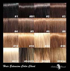 Different Types Of Brown Hair by Different Types Of Shades Of Brown Hair Color Breeds