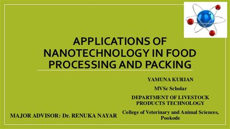 Application Processing System Ppt Nanotechnology In Food Processing And Food Packaging