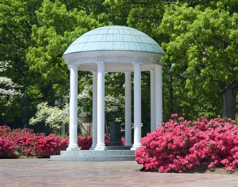 Unc Chapel Hill Essay by Unc Chapel Hill Msw Admissions Essay