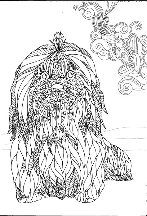 schnauzer pencil coloring coloring pages