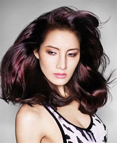 does great color hair plum hair colors on brown hairstyles gorgeous hairstyles