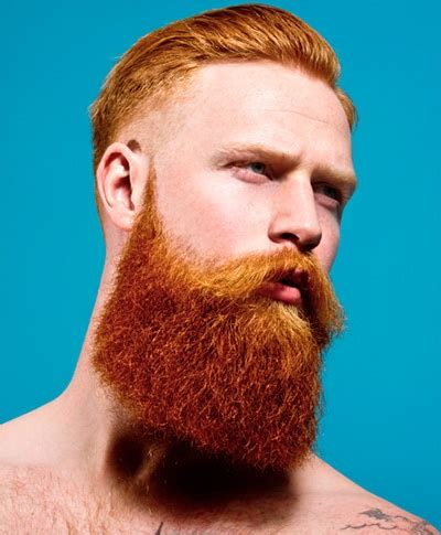 celebrity with red hair and beard the attraction of ginger facial hair ginger parrot