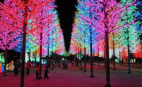 beautiful christmas scenes around world icity city of