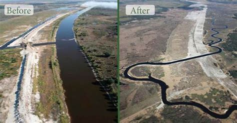 shifting baselines  restoration green world