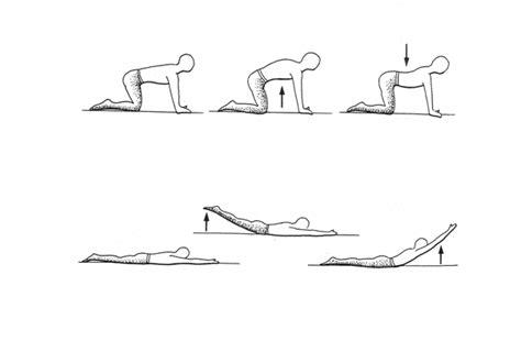 esercizi lombari a casa idrokinesi it 8 esercizi per rachide lombare