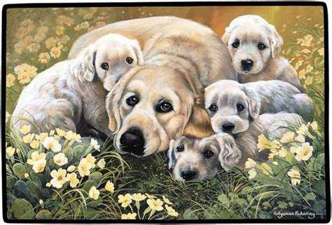 golden retriever family browntrout publishers australia golden retriever family gallery doormat 39 95
