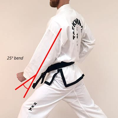 functional tkd from a jow ga perspective | martialtalk.com