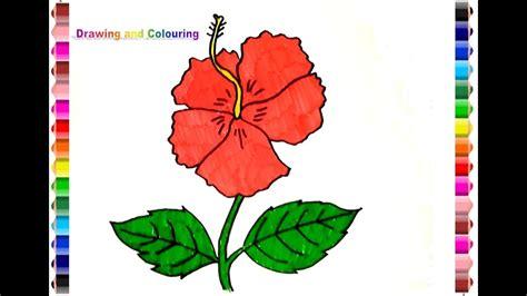 draw  colouring hibiscus flower gambar bunga