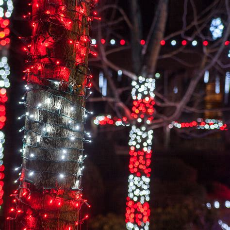 Outdoor Christmas Decorating Ideas Yard Envy How To String Lights On A Tree