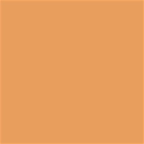 paint color sw 0044 hubbard squash from sherwin williams this is the color of our kitchen