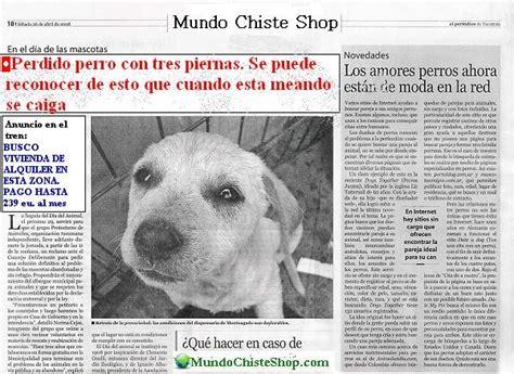 abotonada con un perro noticias de los mundos mundo las noticias chistosas de mcs chistes fotos y curiosidades