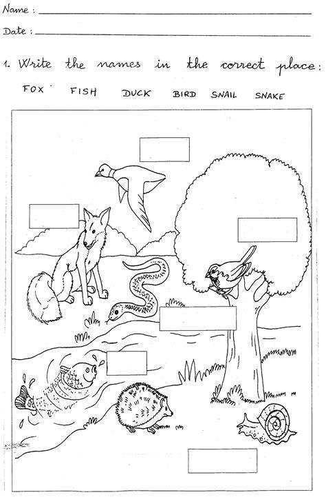 Printable Worksheets For 1st Grade