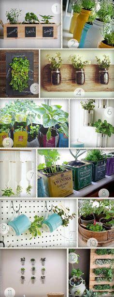 indoor wall herb garden 20 ways to start an indoor herb 20 ways to start an indoor herb garden indoor herbs