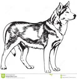 husky face colouring pages