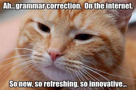 Grammar Correction Meme - oxm dear pc graphics snobs you re holding gaming back n4g