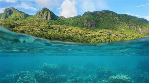 canon underwater digital canon powershot d30 underwater digital 9337b001