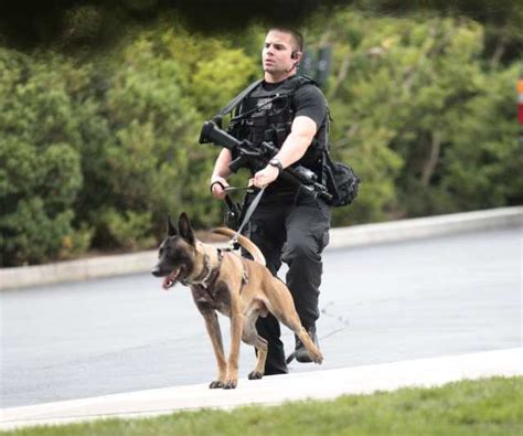 house guard dog white house guard and dog patrol during apprehension 8 2 11