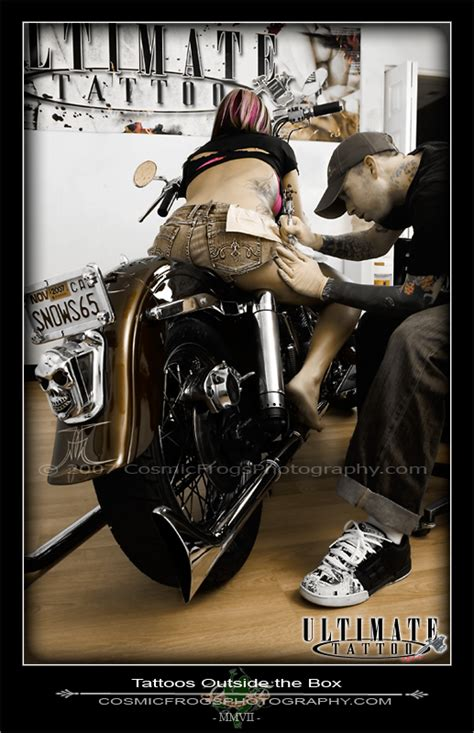 pooch tattooing outside the box tattoos outside the box by cosfrog on deviantart