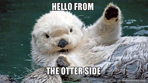 Side By Side Meme - hello from the otter side make a meme