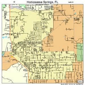homosassa springs florida map 1232400