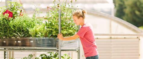 millcreek gardens premium wholesale perennial plant grower