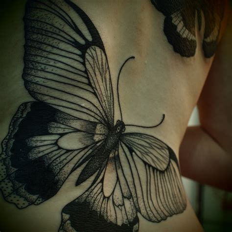 butterfly tattoo guy we find wildness
