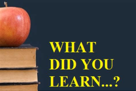 What Did You Will You by What Did You Learn Parent Network