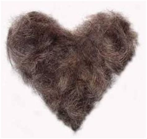 female pubic hair around the world lmfao and hair on pinterest