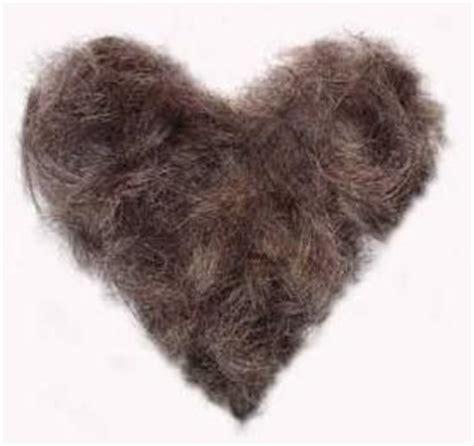 pubic hair braid lmfao and hair on pinterest