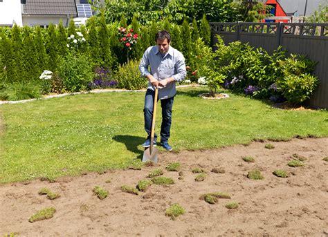 Verlegung Rollrasen by Rollrasen Verlegen Rasenpflege Selbst De
