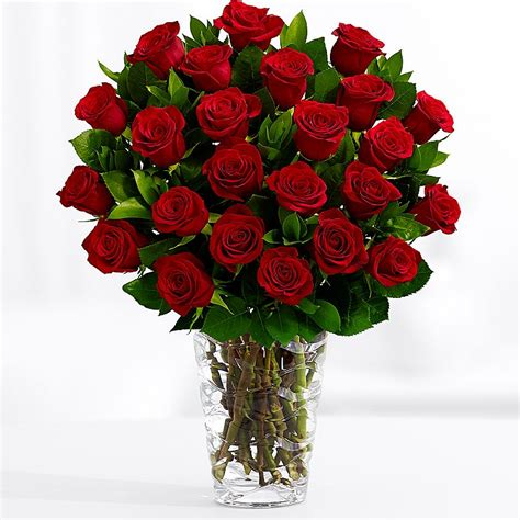 flower pics send flowers from 19 99 delivered by proflowers