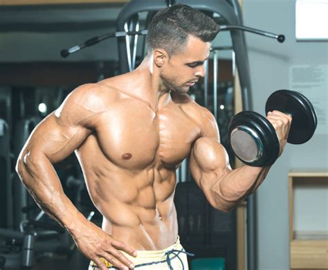 supplement xpress bodybuilding show 25 top sports supplements nutrition express articles