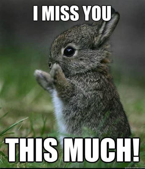 Funny Miss You Meme - funny cute miss you memes memeologist com