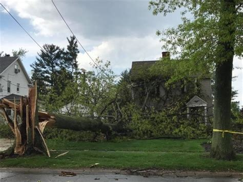 tree falls on house insurance the agent if a tree falls on my house does homeowners insurance cover it