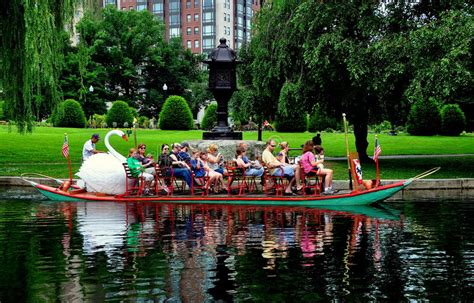 swan boats in the boston public garden boston ma swan boat in the boston public garden