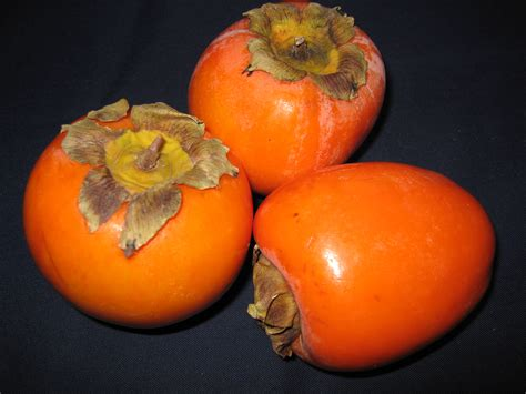orange colored fruit images search