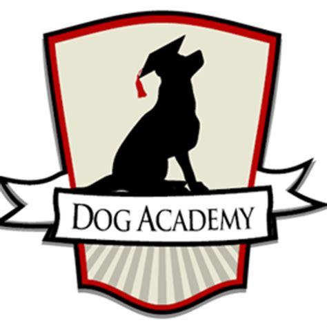 the puppy academy academy dogacademycom