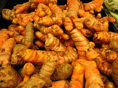 jamu kunyit asam wikipedia khasiat kunyit kuning herbal alami tradisional penangkal