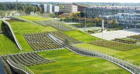 tetto giardino vantaggi tetto verde tutti i vantaggi delle coperture green