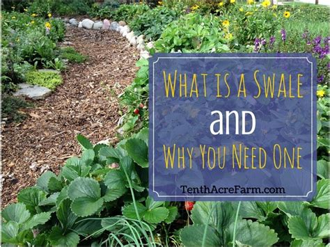 what is a backyard garden what is a swale and why you need one tenth acre farm