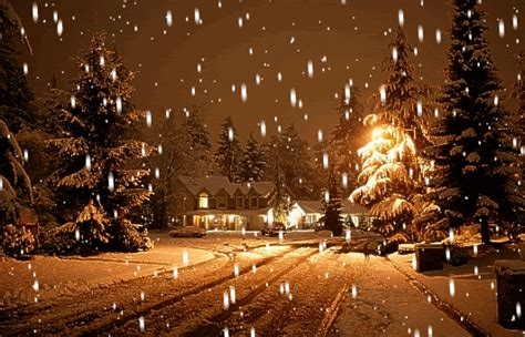 Winter Snow Animated Missing Unidentified People Lights And Snow