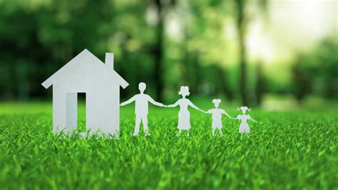 white paper house  family animation  green nice